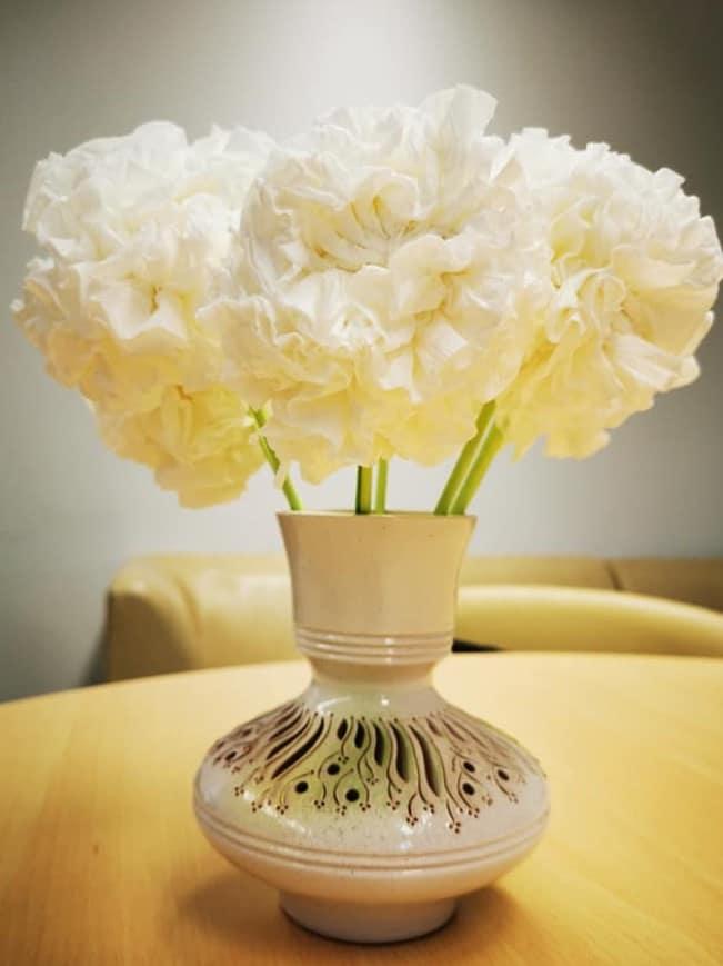Pop gėlės 1
